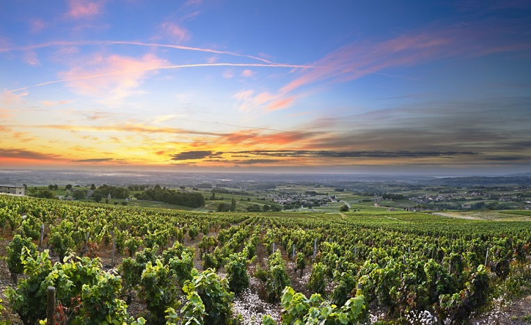Top 5 Things To Do In Rhone Alpes & Best Tourist Attractions