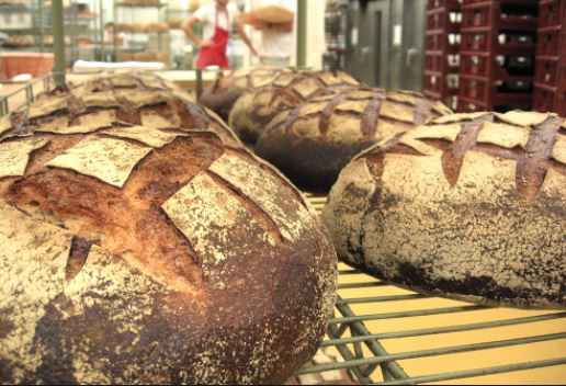 Les miches or Sourdough French Bread